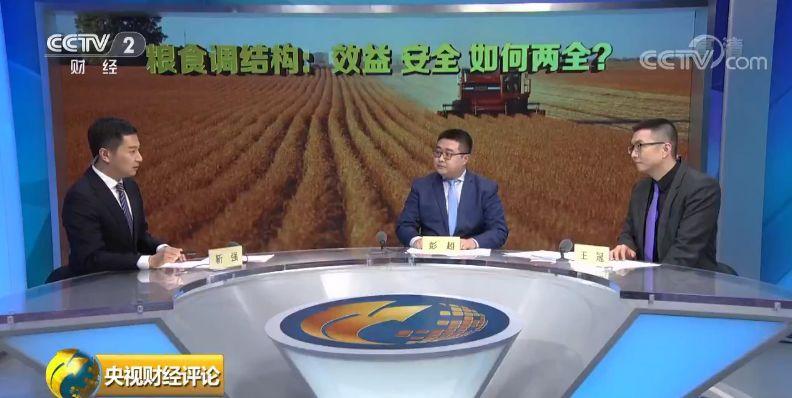 央视财经评论:粮食收购安全与收益如何...
