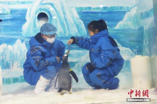 五省市冬季旅游市场:开发冰雪资源 打...