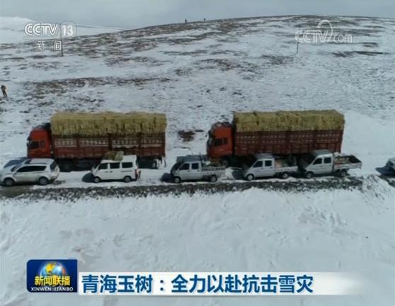 青海玉树:全力以赴抗击雪灾