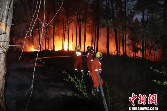湖北随州一林场发生火灾 消防员奋战近...