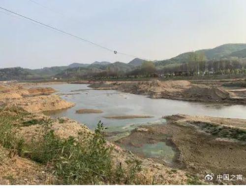 """河南回应保护区遭盗砂毁林:非法分子""""打..."""