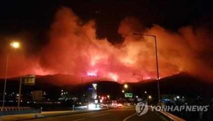 韩国东部发生大规模山火 图片来源:韩联社